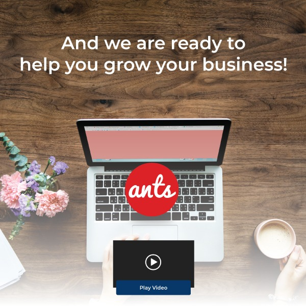 🚀 Launch of our new product, Ants!